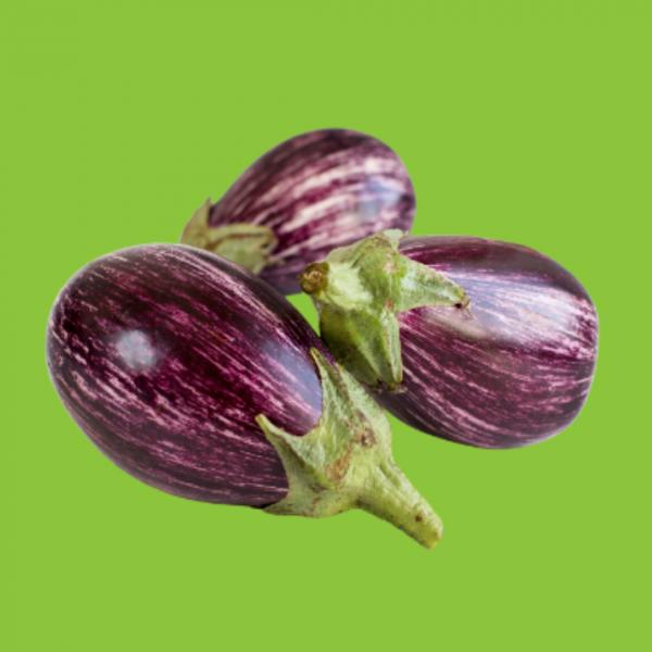 aubergine striée