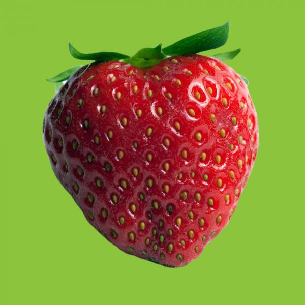 fraises charlotte