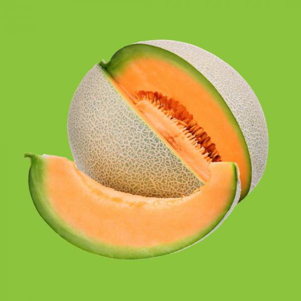 melon anasta